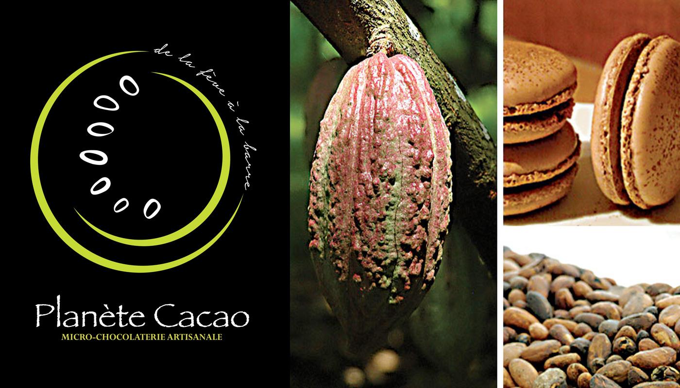 logotype chocolat artisan